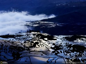 NG Terraces at Yunan – China - Mike Cheng