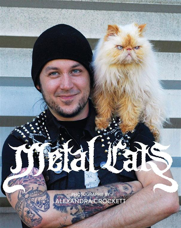 metal-cats-alexandra-crockett-00